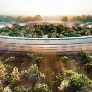 """""""Apple"""" beveik baigė pasiruošimo darbus naujos būstinės statyboms"""