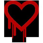 """NSA galimai žinojo apie saugumo spragą """"kraujuojanti širdis"""" ir naudojosi tuo mažiausiai dvejus metus"""