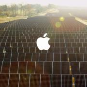 """Naujausią """"Apple"""" vaizdo įrašą įgarsino pats Timas Cookas"""