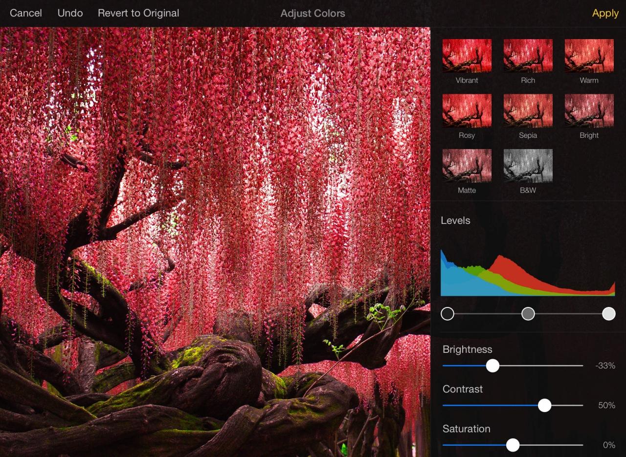 """Lietuvių sukurta """"Mac"""" nuotraukų redagavimo programa """"Pixelmator"""" išleista ir """"iPad"""" vartotojams"""